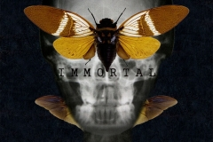 1_IMMORTAL-FINE-ART-PRT